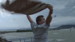 Balaton vihar körkép