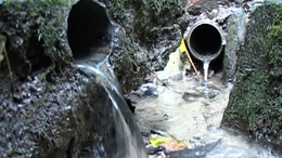 Rosszullétet is okozhatnak egyes források vizei