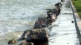 Romos állapotú parttal várják a szezont a Balatonon