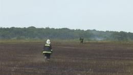 40 hektáron lángolt a gabona Barcson - 130 embernek kellett elhagynia otthonát