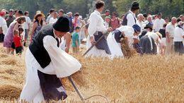 Kalapemelés, imádság és fohász - aratófesztivál Fiadon