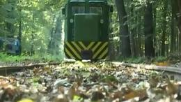 Margit-vonal - Mesztegnyő