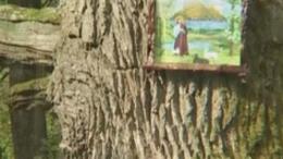 Képes fa - Ságvár