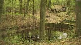 Feneketlen-tó - Denna