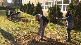 Fát ültettek az ökoiskolások