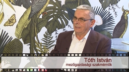 Kapos TV 30: beszélgetés Tóth Istvánnal